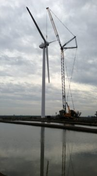 Lamb Supplier Gets 50% of Energy from Onsite Wind Power