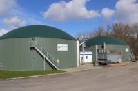 Vegetable Producer Installs 500 kW Biogas Plant