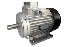 Energy Manage electric motor