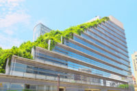 The Benefits of Green Roofs